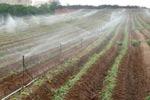 irrigaz rid