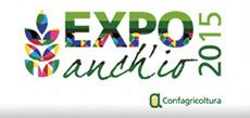 expo new