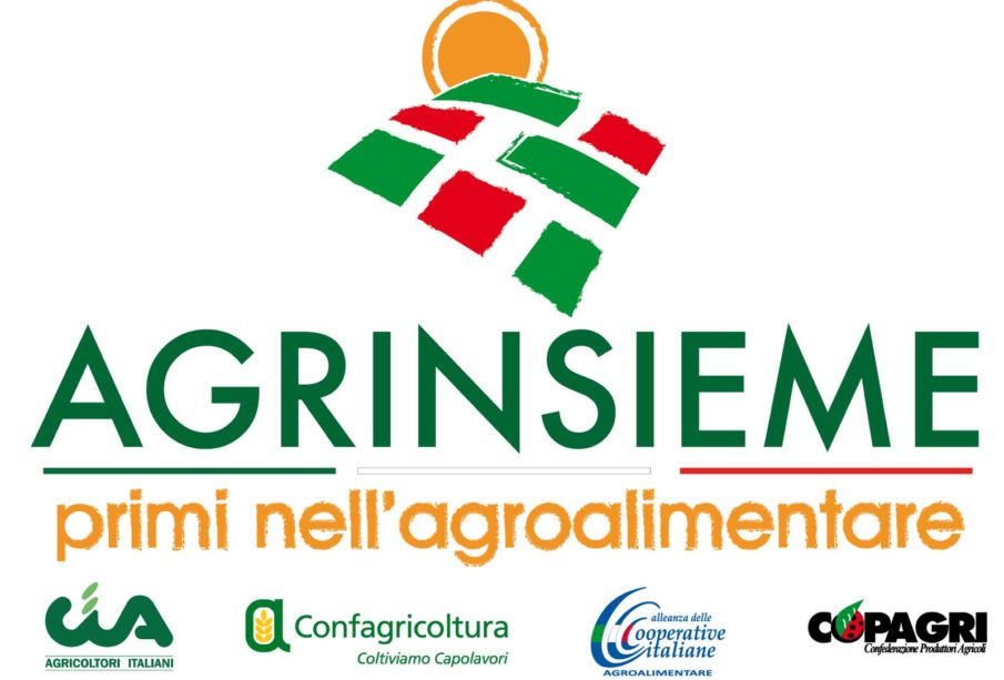 agrinsieme logo